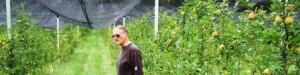 Alois im pestizidfreien Apfelgarten